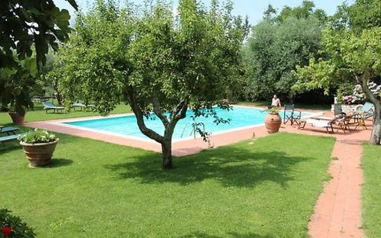 Casolare di Libbiano : Pool and relaxing on the grounds...