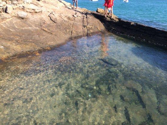Azedinha Beach: formação de rochas