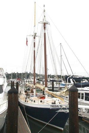 Schooner Freda B: Sailing boat