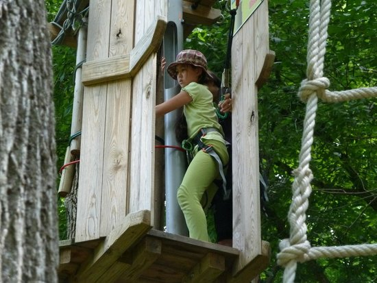 Go Ape Treetop Adventure Course : Digging Deep