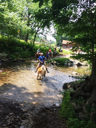 Mountain Creek Riding Stables : Riding thru the creek.
