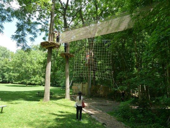 Go Ape Treetop Adventure Course : Point of No Return