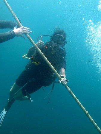 Scuba Cat Diving - Soi Watanna Shop and Classrooms : :)