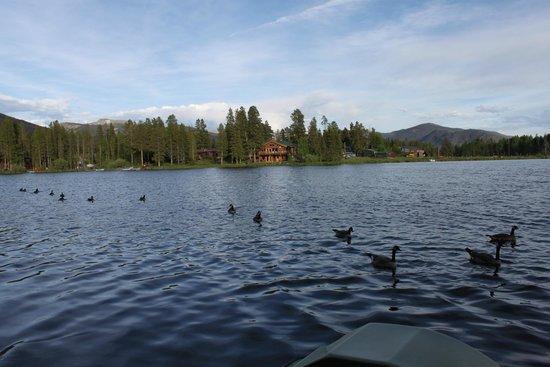 Moose Lake Lodge, LLC : Taken from the dock