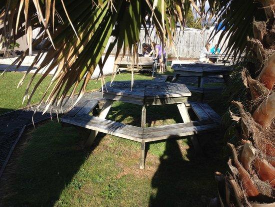 Turtlecove Accommodation: Terrasse