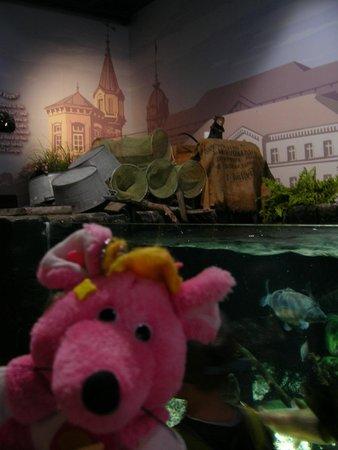 SEA LIFE Konstanz: 壁画や置物等水槽まわりの演出も楽しい!