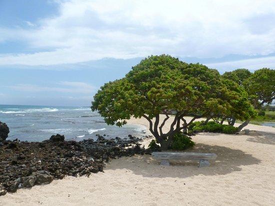Four Seasons Resort Hualalai: rocky beach
