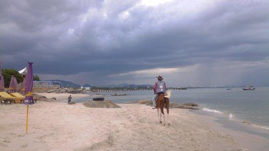 Hua Hin Beach : can rent a horse to ride along beach