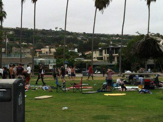 La Jolla Shores Hotel: The park right next door to hotel