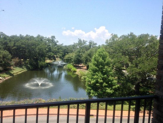 Grand Hotel Marriott Resort, Golf Club & Spa: View of the pond from our room