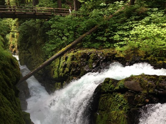 Sol Duc Falls: Another View of the Falls