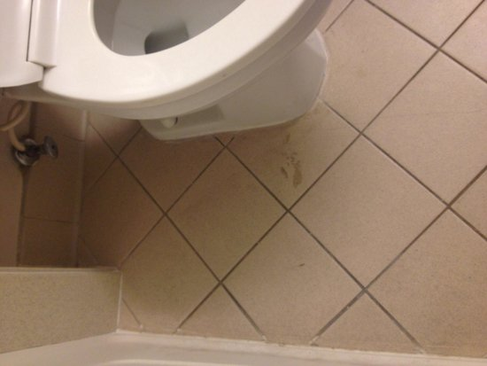 La Quinta Inn Las Cruces Mesilla Valley: Filthy and stained bathroom floor