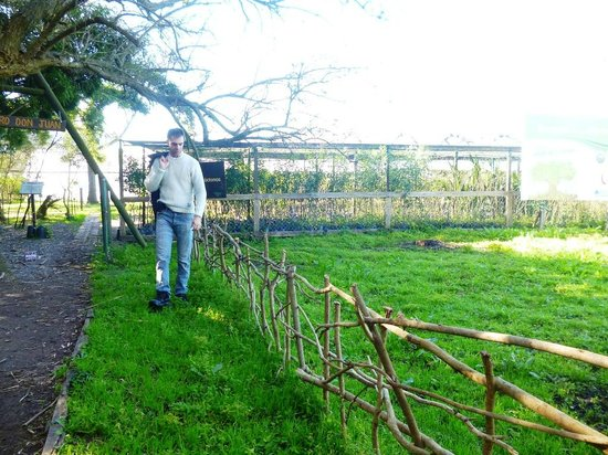 Foto de reserva natural otamendi campana zona de viveros for Viveros zona sur
