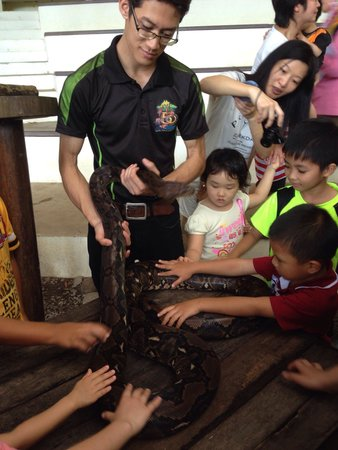 Lok Kawi Wildlife Park: Close encounter with snake is good experience for all