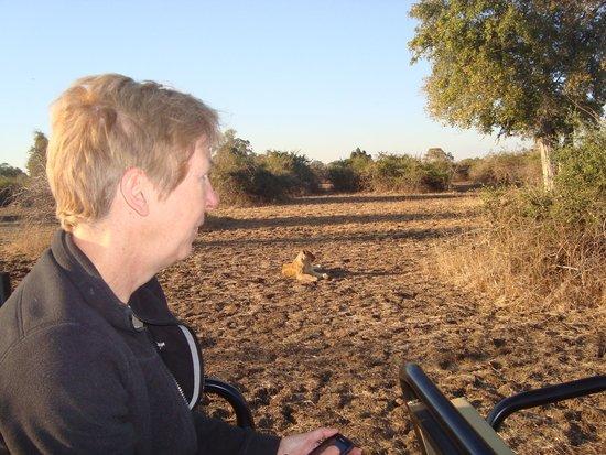 Lion Camp Safari Lodge: Fiona with wee pal...South Luangwa 2014