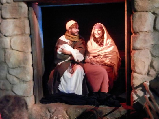 Creation Museum in December