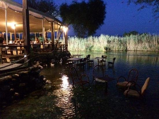 Orfoz Restaurant: heerlijk gegrilde vis eten