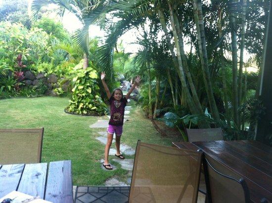 Kalani Hawaii Private Lodging : Out back near the Lanai