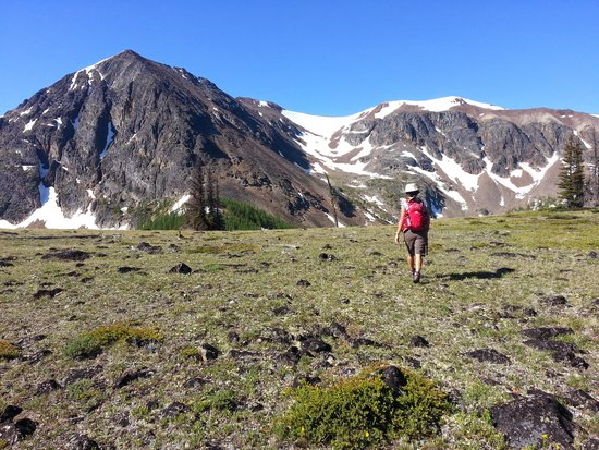 Cathedral Lakes Lodge: hiking haven