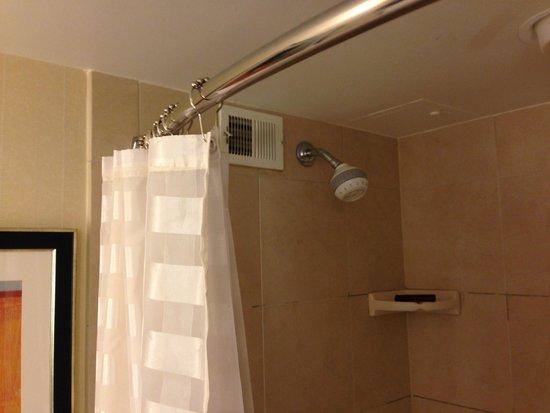 Embassy Suites by Hilton Denver - Tech Center: Bathroom, low ceiling s
