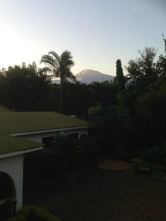 Worlds Collide Africa House: The view of Mt Kilimanjaro from the balcony of Pamoja Guesthouse