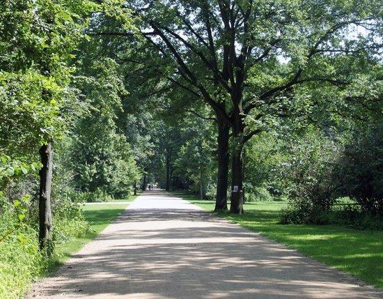 Tiergarten: Tiegarten