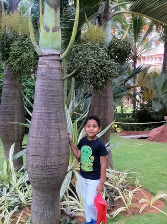 The Leela Palace Bengaluru: lovely gardens