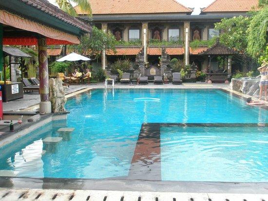 Satriya Cottages : Pool