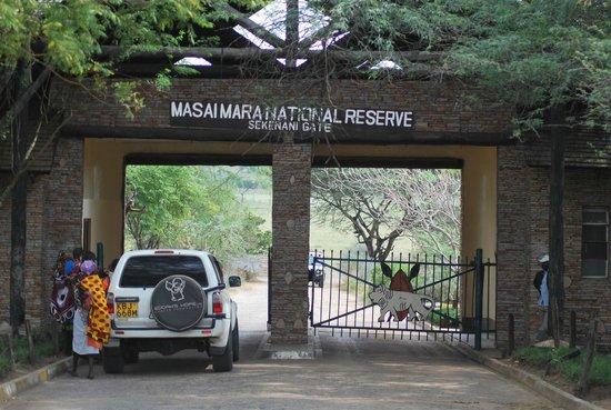 Tipilikwani Mara Camp - Masai Mara: Sekenani Gate