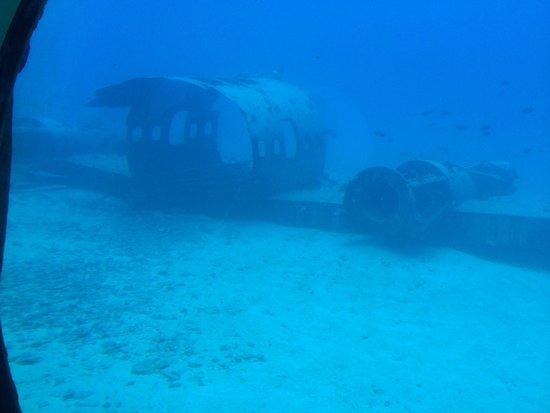 Atlantis Submarines Waikiki: ✈️��