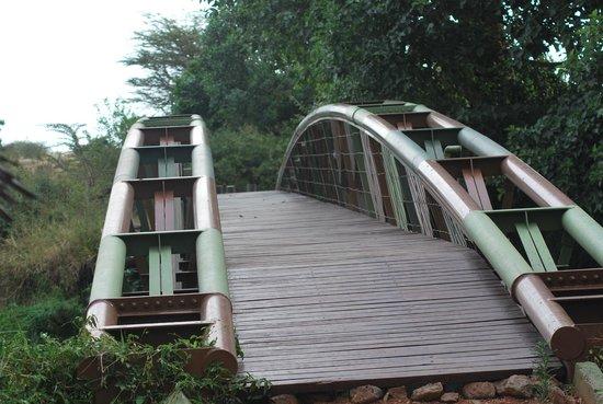 Tipilikwani Mara Camp - Masai Mara: The bridge to the hotel lobby