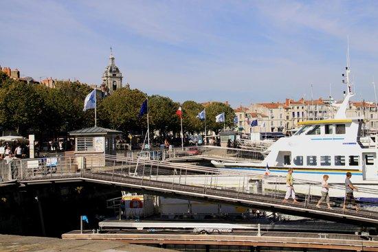 Vieux Port : Вид на марину