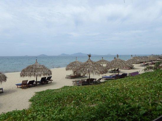 Banyan Beach Bar and Restaurant: view from bar