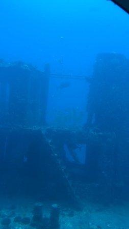 Atlantis Submarines Waikiki: ������