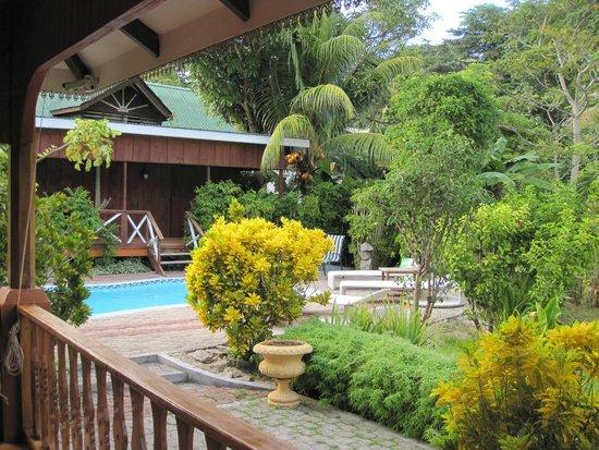 Casa De Leela : Pool nearby