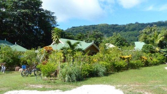 Casa De Leela : View of front of bungalow in grounds