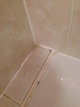 Sketchley Grange Hotel & Spa: Mould bath