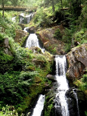 Triberger Waterfall: Nature's Gift