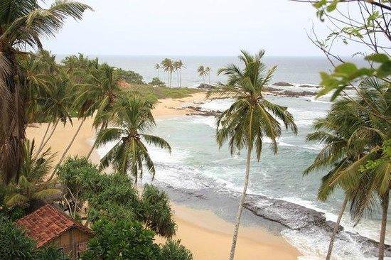 Eva Lanka Hotel: Вид на пляж Евы Ланки