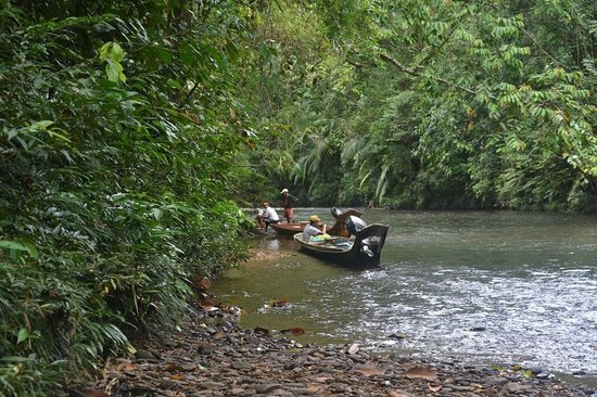 Batang Ai National Park : The boats they use for river travels