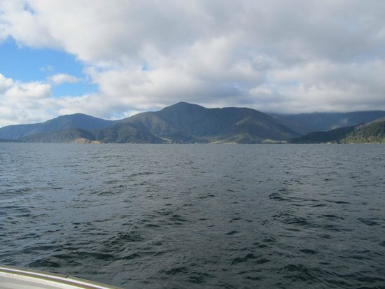 Pelorus Mail Boat: Out in the Sounds