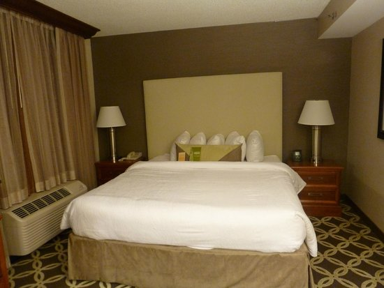 Hilton Garden Inn Washington, DC Downtown: Cama dura