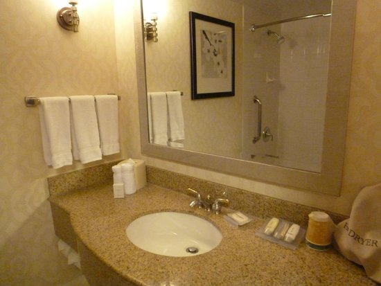 Hilton Garden Inn Washington, DC Downtown: Baño completo