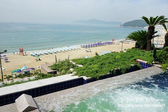 Paradise Hotel Busan: 야외 수영장