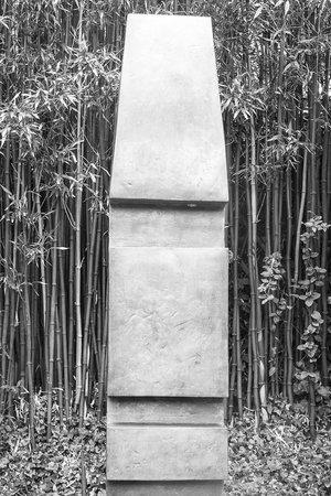 Barbara Hepworth Museum and Sculpture Garden: Barbara Hepworth Sculpture Garden