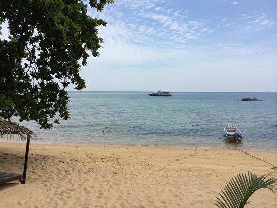 Melina Beach Resort U Tioman Malaysia Devant Le Et Toutes Les Chambres Face à