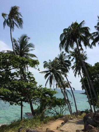 Melina Beach Resort Pulau Tioman Malaysia: En allant sur Paya (à pied 20 min)