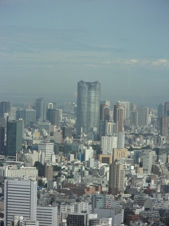 Tokyo Plaza Hotel: View of Tokyo city from Government Building