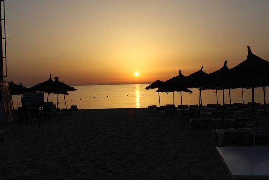 ClubHotel Riu Bellevue Park : The beach at Sunrise
