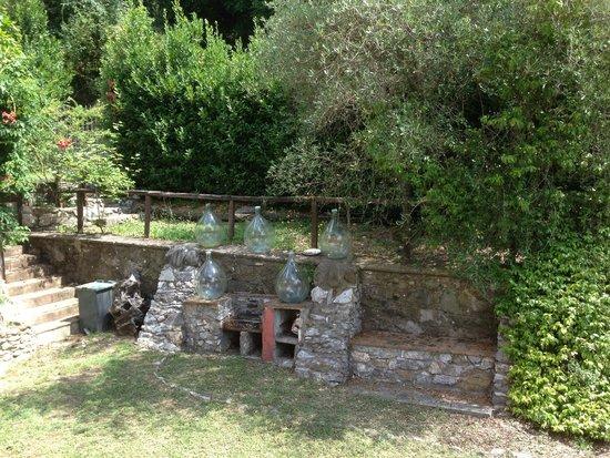 Agriturismo Podere San Rocchino: outside area